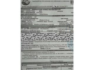 Поручение экспедитору Казань-Альметьевск